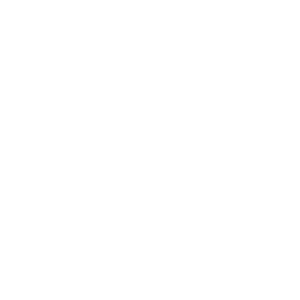 Fortior icon 300px png